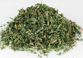 Alfalfa (Medicago sativa) - Cut