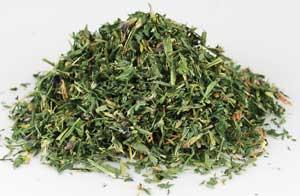 Alfalfa (Medicago sativa) - Cut