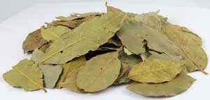 Bay Leaves (Laurus Nobilis) - Whole