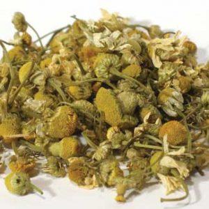 Chamomile Flower Egyptian (Matricaria) - Whole