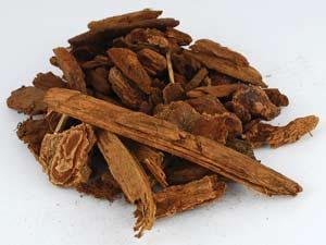 Jezebel Root Pieces (Picea)
