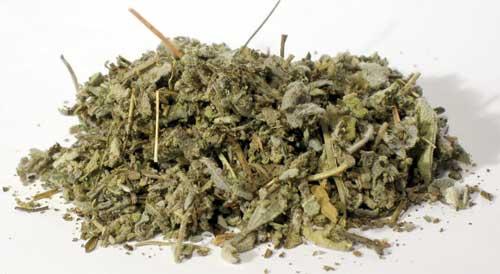 Sage Leaf (Sage officinales) - Cut
