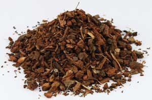 White Oak Bark (Quercus alba) - Cut