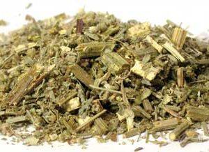 Wormwood (Artemisia absinthium) - Cut
